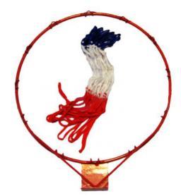 Кольцо баскетбольное с сеткой C-1816-1