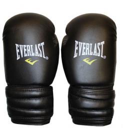 Перчатки боксерские Everlast MA-5018-BK черные