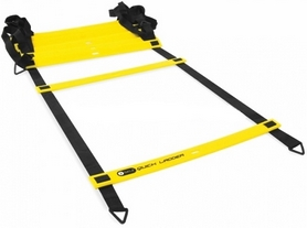 Распродажа*! Лестница координационная Winner W-135531 8 м