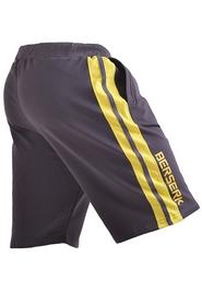 Фото 3 к товару Шорты Berserk Speed Training темно-серые