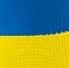 Гетры Calcio желто-синие
