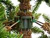Ель TriumphTree Sherwood de Luxe 1,85 м голубая - фото 5