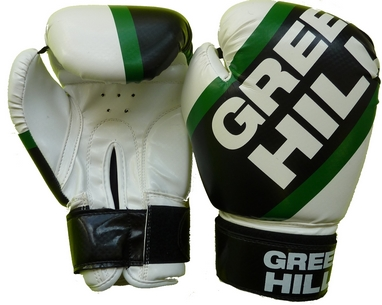 Перчатки боксерские Green Hill Passion BGP-2221