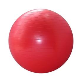 Фото 1 к товару Мяч для фитнеса  Pro Supra FI-075 55 cм красный