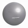Мяч для фитнеса (фитбол) ProForm 75 см серый - фото 1