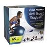 Мяч для фитнеса (фитбол) ProForm PFISB6513 65 см синий - фото 8