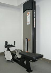 Блок для мышц спины (нижняя тяга) Fit Way Factory Bridge Style A 104 - Фото №3