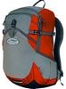 Рюкзак спортивный Terra Incognita Onyx 18 красный/серый - фото 1