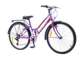 """Велосипед городской Discovery Prestige 14G Vbr St 24"""" с багажником голубо-бело-фиолетовый 2016 рама – 14"""""""