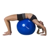 Мяч для фитнеса (фитбол) Tunturi Gymball 55 см синий - фото 4