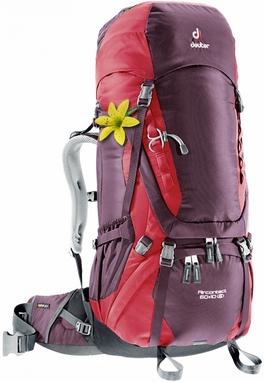 Рюкзак туристический Deuter Aircontact 60+10 л aubergine-cranberry