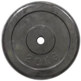 Фото 1 к товару Диск обрезиненный 20 кг R-20 - 30 мм