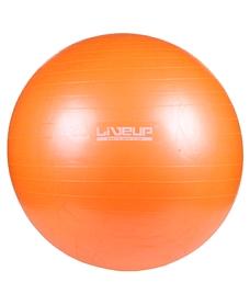 Мяч для фитнеса (Фитбол) Live UP Gym Ball 55
