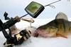 Видеоудочка (подводная камера) Ranger Underwater Fishing Camera - фото 3