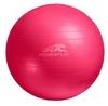 Мяч для фитнеса (фитбол) PowerPlay 4001 55 см - фото 1