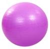 Мяч для фитнеса (фитбол) 65 см HMS сиреневый - фото 1