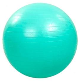 Мяч для фитнеса (фитбол) 65 см HMS мятный