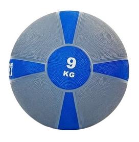Мяч медицинский (медбол) ZLT FI-5122-9 9 кг серый с синим