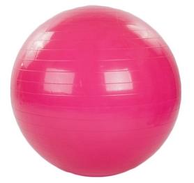 Мяч для фитнеса (фитбол) HMS FI-1982-85-P 85 см розовый