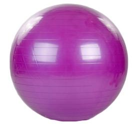 Мяч для фитнеса (фитбол) HMS FI-1982-85-V 85 см фиолетовый