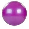 Мяч для фитнеса (фитбол) 65 см HMS фиолетовый - фото 1