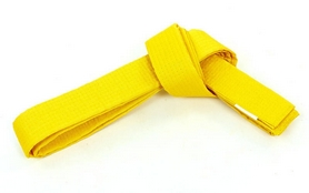 Пояс для кимоно Champion желтый - 260 см