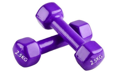 Гантели виниловые Pro Supra 2 шт по 2,5 кг фиолетовые