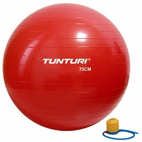 Мяч для фитнеса (фитбол) Tunturi Gymball 14TUSFU282 75 см красный