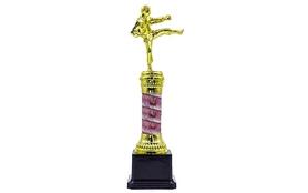 Награда (приз) спортивная ZLT Карате C-C3580-10