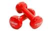 Гантели с виниловым покрытием ZLT 2 шт по 1 кг красные