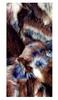 Головной убор зимний многофункциональный (Бафф) Wind X-treme 1177 Rabbit Brown