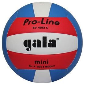 Мяч волейбольный Gala Pro-Line BV4051SAE BV 4051SAE