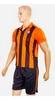 Форма футбольная детская (шорты, футболка) Soccer Шахтер 2017 домашняя CO-3900-SH оранжевая - фото 2