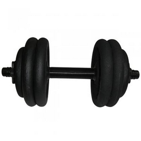 Гантель наборная стальная Newt 15 кг