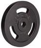 Диск стальной Hop-Sport - 31 мм, 10 кг - фото 2