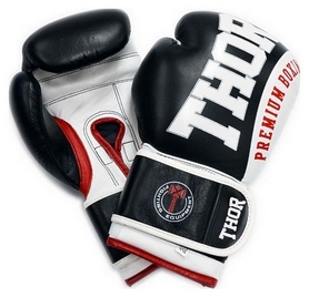 Перчатки боксерские Thor Shark Leather черные (8019/03)
