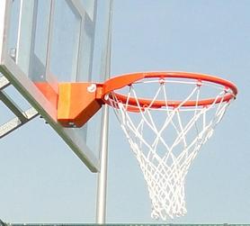 Фото 1 к товару Корзина баскетбольная амортизационная (SS00062)