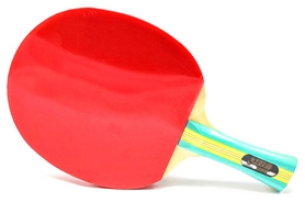 Ракетка для настольного тенниса DHS S-S202, 2*