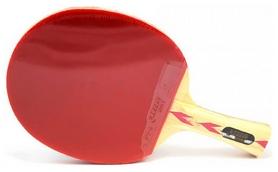 Ракетка для настольного тенниса DHS S-S402, 4*