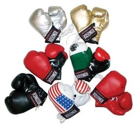 Брелок Ringside Mimiature Bag Gloves FP-MBG, разноцветный (2962760006549)