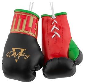 Брелок Title Oscar De La Hoya 5 Mini Boxing Gloves FP-ODMBG5, черный (2976890027152)