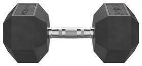 Гантели хромированные с резиновым покрытием Eleiko XF Dumbbell - черные,  2 шт по 24 кг (3002338)