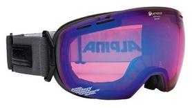 Очки горнолыжные Alpina Big Horn MM S2 (A7207-73)