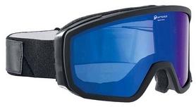 Очки горнолыжные Alpina Scarabeo HM S2, черные (A7249-31)