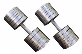 Гантели наборные RN Sport, 2 шт по 50 кг (StD-50)