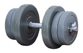 Гантель наборная RN Sport Gray, 11 кг