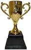 Кубок спортивный золотой 2 (golden_cup2) - уцененный*