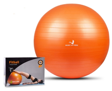Мяч для фитнеса (фитбол) Way4you, 55 см (w40120)