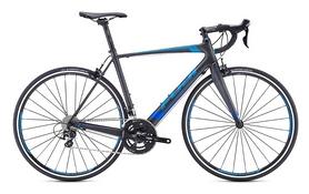 """Велосипед шоссейный Fuji Altamira 1.3 28"""", рама - 53 см (M/L) (1263781953)"""
