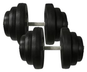 Гантели наборные композитные Newt Rock Pro-R 2 шт по 19,5 кг